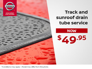 Track and Sunroof Drain Tube Service