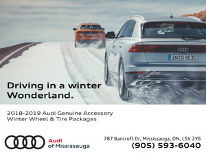 2018-2019 Audi Genuine Winter Wheel & Tire Packages