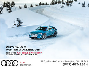 Audi Winter Wheel & Tire Packages