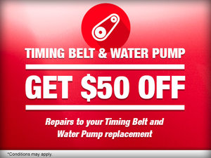 Timing Belt & Water Pump