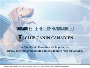 Subaru est le fier commanditaire de club canin canadien