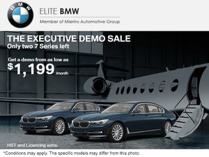 The Executive Demo Sale