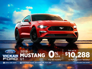 2019 FORD MUSTANG $10,288 in Savings!