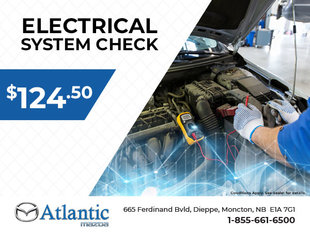 Electrical System Check