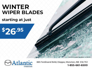 Winter Wiper Blades from Only $26.95