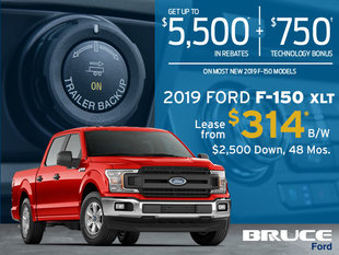 Lease a 2019 Ford F-150 XLT