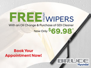Free Front Wipers