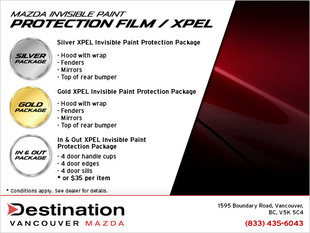 Paint Protection Packages