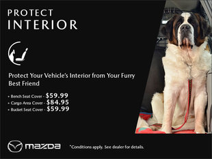 Protect the Interior of Your Vehicle