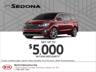 Get the 2019 Kia Sedona!
