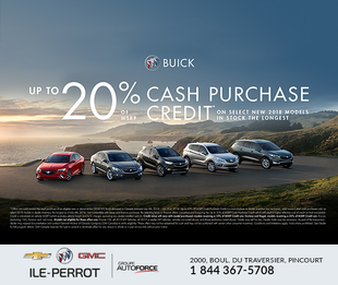 Up to 20 % cash purchase credit!