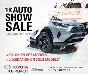 The Auto Show Sale