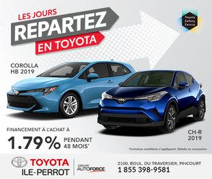 Corolla HB & CH-R 2019