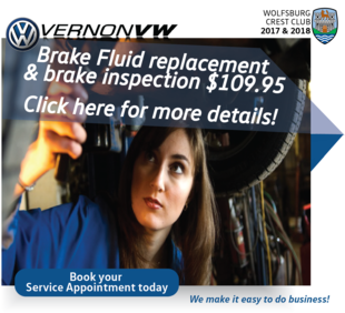Brake Fluid replacement and brake inspection