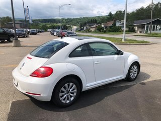 2013 Volkswagen Beetle Coupe Coupe