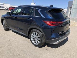 2019 Infiniti QX50 2.0T Essential AWD (E6SG79) in Regina, Saskatchewan - 2 - w320h240px