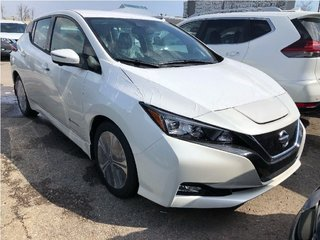 2019 Nissan Leaf SL in Mississauga, Ontario - 2 - w320h240px