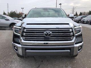 2019 Toyota Tundra Platinum in Bolton, Ontario - 3 - w320h240px