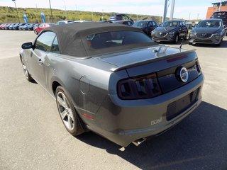 Ford Mustang GT DÉCAPOTABLE 5.0L 2013
