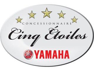 Yamaha Star Venture TC - 2018