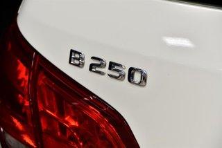 2015 Mercedes-Benz B250 4MATIC Sports Tourer