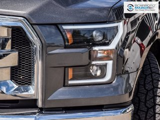 2015 Ford F-150 XLT NO ACCIDENT RWD
