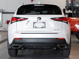 2020 Lexus NX 300 Luxury Package