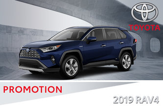 2019 RAV4 AWD Trail / Limited
