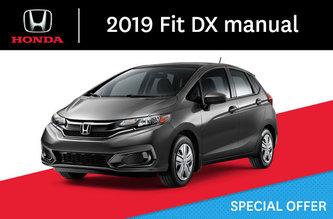 2019 Fit DX Manual