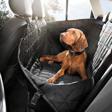 Rabais jusqu'à 15% sur les accessoires pour chien d'origine Audi