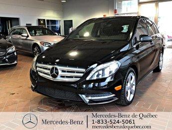 2014 Mercedes-Benz B-Class B 250 Premium Pack,