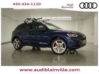 Audi SQ5 Technik 2019