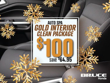 Save $65 on Gold Interior Detailing Package