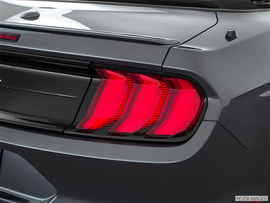 Ford Mustang Convertible EcoBoost 2019 - photo 1