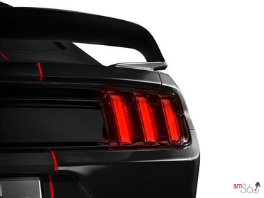Ford Mustang Shelby GT350R 2019 - photo 1