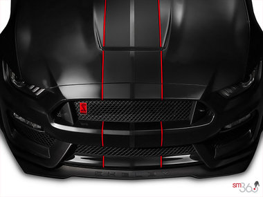 Ford Mustang Shelby GT350R 2019 - photo 7