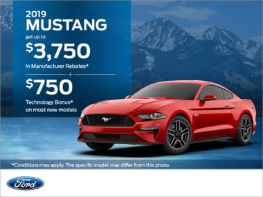 2019 Ford Mustang!