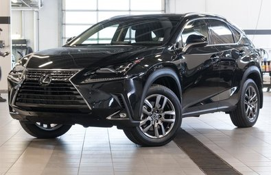 2019 Lexus NX 300 Luxury Package