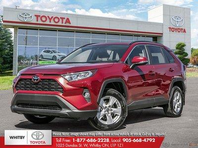 2019 Toyota RAV4 XLE/XLE PREMIUM XLE