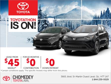 Toyota's Monthly Event!