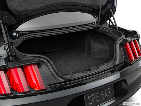 Ford Mustang V6 2017 - photo 3