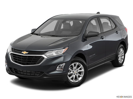 Chevrolet Equinox LS 2018 - photo 2