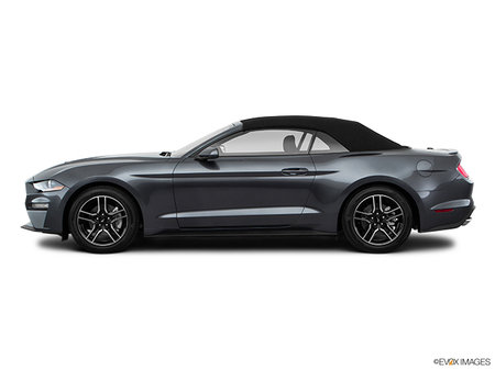 Ford Mustang Convertible EcoBoost 2018 - photo 4