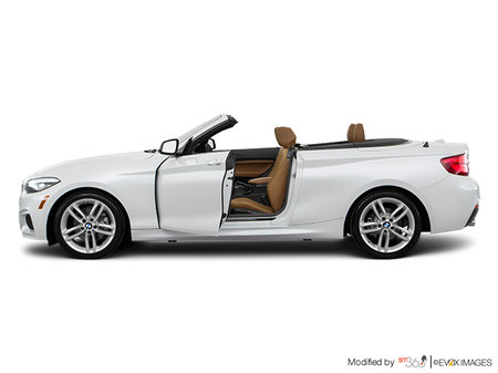 BMW 2 Series Cabriolet 230i xDrive 2019 - photo 1