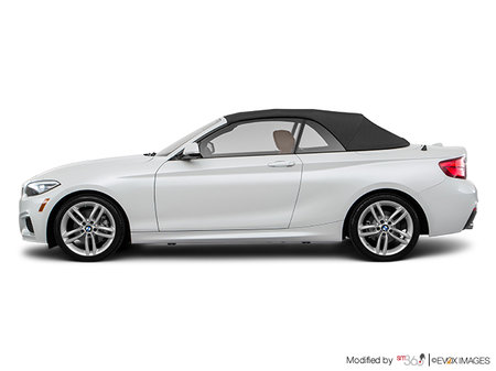 BMW 2 Series Cabriolet 230i xDrive 2019 - photo 4