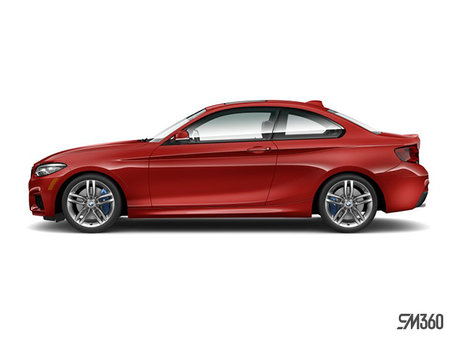 BMW 2 Series Coupé 230i xDrive 2019 - photo 1