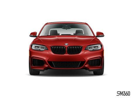 BMW 2 Series Coupé 230i xDrive 2019 - photo 3