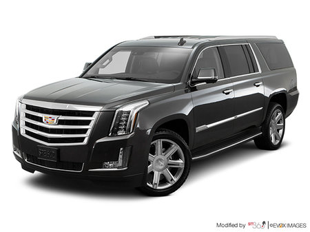 Cadillac Escalade ESV ESV LUXURY 2019 - photo 2