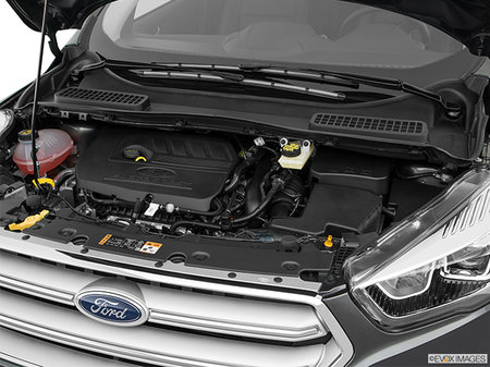 Ford Escape SEL 2019 - photo 4