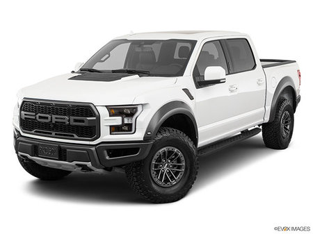 Ford F-150 RAPTOR 2019 - photo 2